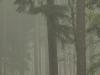 Den Treek-Henschoten